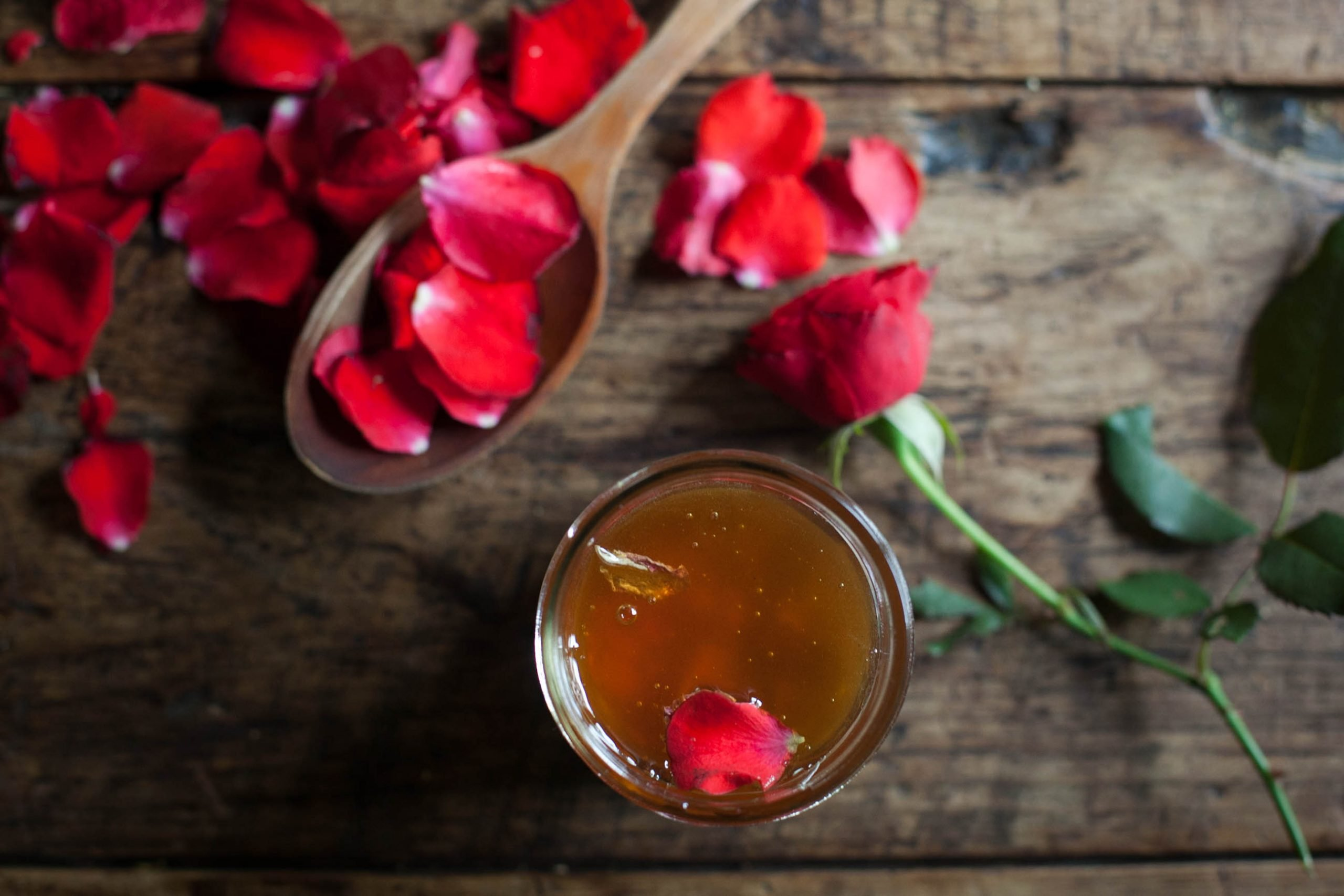 rose honey, the seed guild, wisconsin, foraging